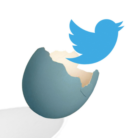 Let's let the Twitter bird hatch! (image from mkhmarketing, reproduced here under creative commons)