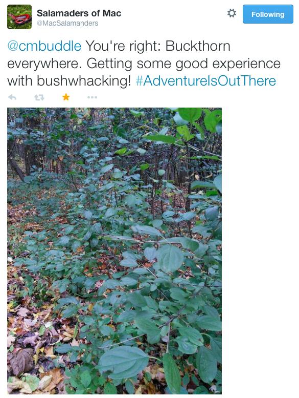 Screen Shot 2014-10-27 at 6.09.34 PM
