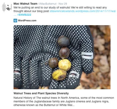 An example of a student Tweet, used to promote their blog post.